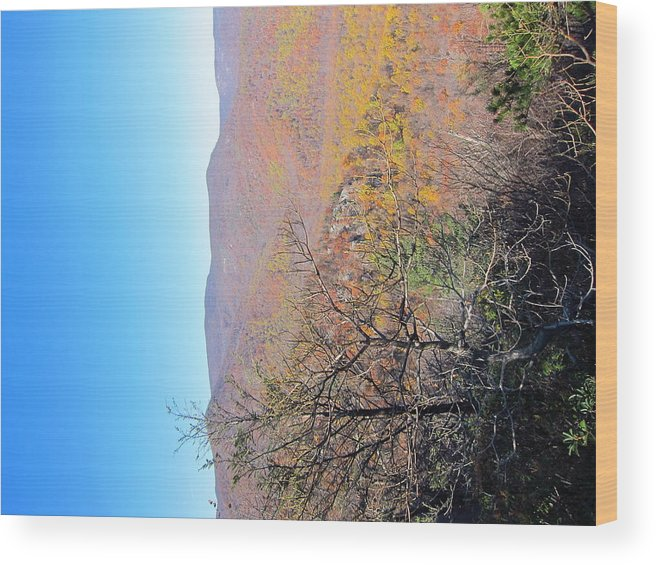 Old Wood Print featuring the photograph Old Rag Hiking Trail - 121223 by DC Photographer