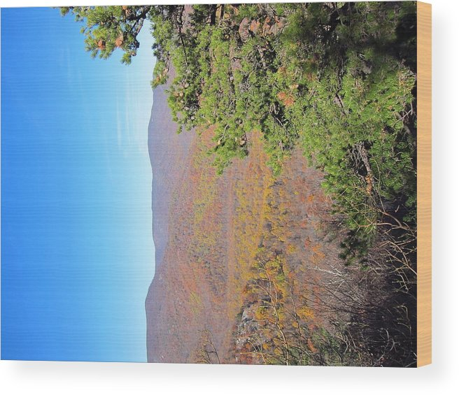 Old Wood Print featuring the photograph Old Rag Hiking Trail - 121224 by DC Photographer