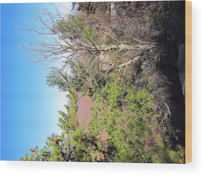 Old Wood Print featuring the photograph Old Rag Hiking Trail - 121226 by DC Photographer