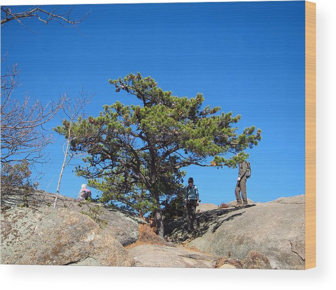 Old Wood Print featuring the photograph Old Rag Hiking Trail - 121238 by DC Photographer