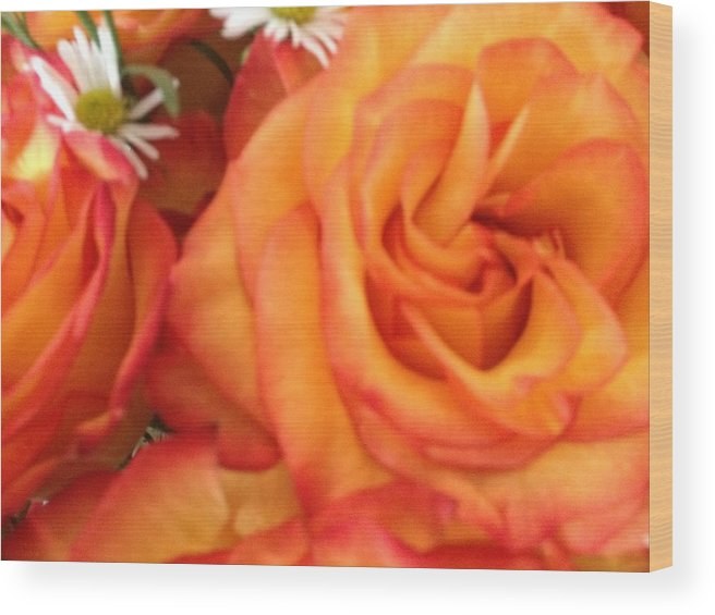 Vibrant Orange Roses Wood Print featuring the photograph Orange Utopia Roses by Amina Bentivegna