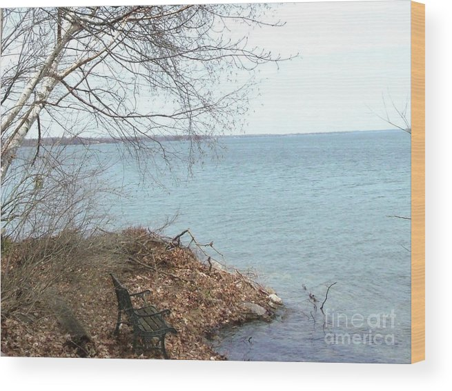 Real Photo Wood Print featuring the photograph Peaceful Place To Sit by Gail Matthews