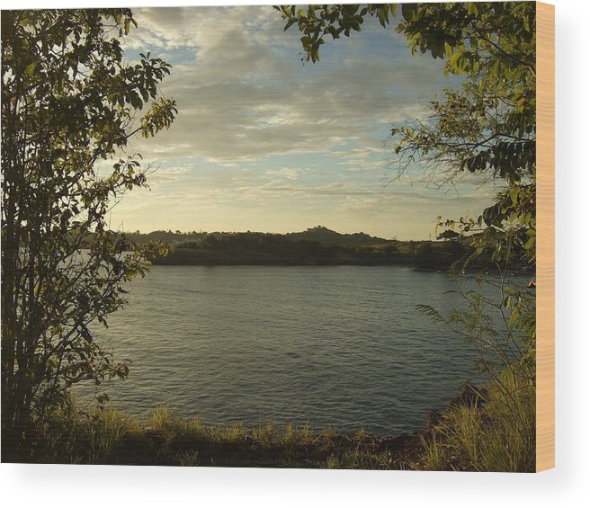 Wood Print featuring the photograph Perfect View by Katerina Naumenko