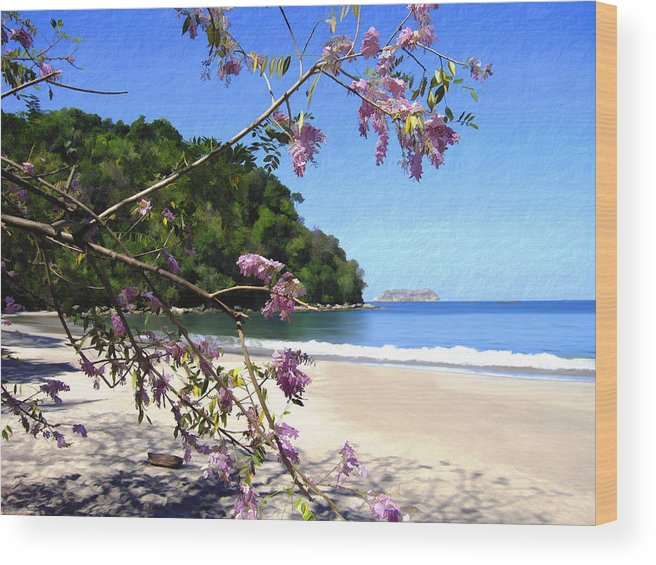Beach Wood Print featuring the photograph Playa Espadillia Sur Manuel Antonio National Park Costa Rica by Kurt Van Wagner