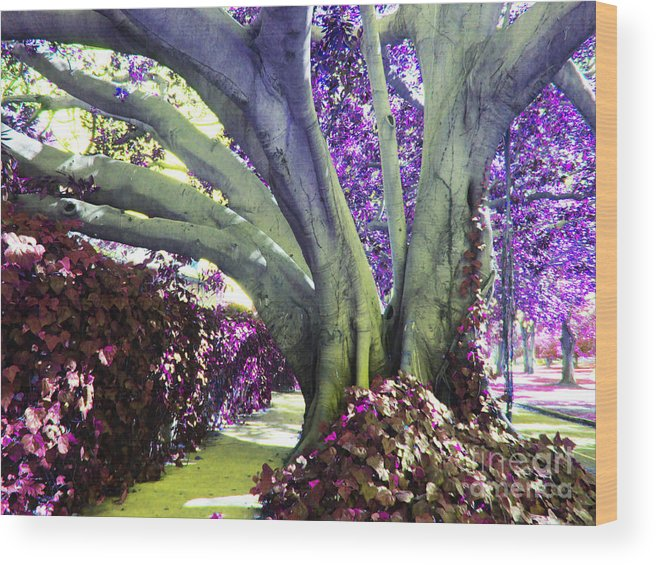 Multicolor Tree Wood Print featuring the photograph Psychedelic Purple Fuschsia Earthy Tree Street Landscape Los Angeles Cool Artistic Affordable Art by Marie Christine Belkadi