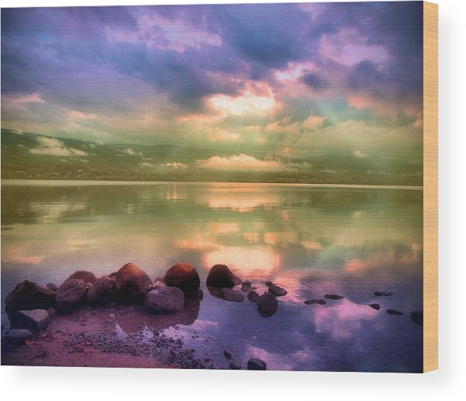Light Wood Print featuring the photograph Rays Of Hope by Tara Turner