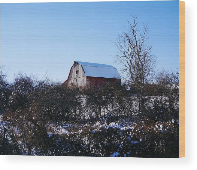 Red Barn Silos Landscapes Farm Country Rural Countryside Wood Print featuring the photograph Red Barn by Jim Nance