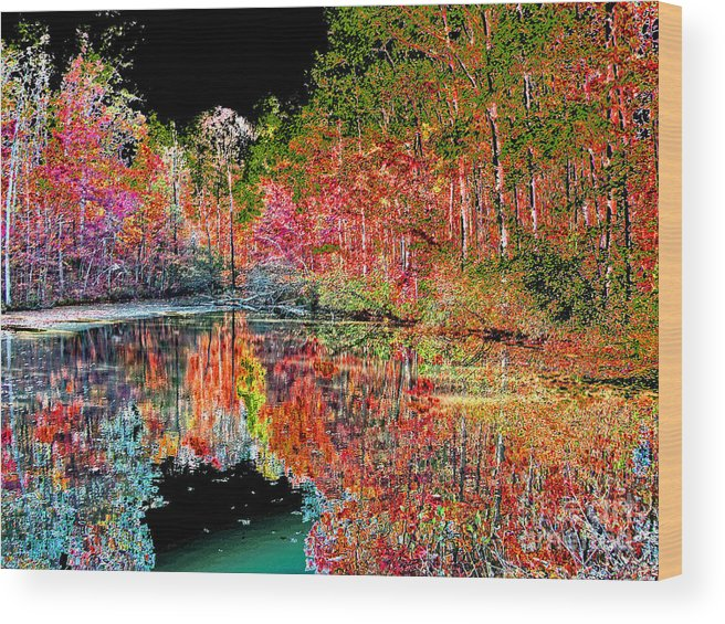 Landscape Wood Print featuring the photograph Reedy Creek Nc 3 by Earl Johnson