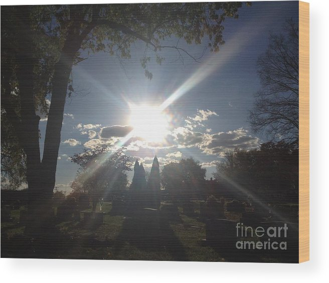 Trees Wood Print featuring the photograph Resurrection by Paula Talbert