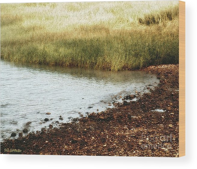 Marsh Wood Print featuring the painting Rippled Water Rippled Reeds by RC DeWinter