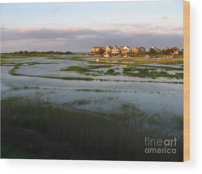 Marsh Wood Print featuring the photograph Saltponds Summer by Christine Stack