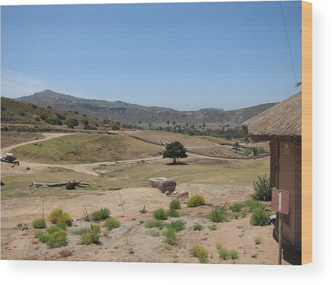 San Wood Print featuring the photograph San Diego Zoo - 12125 by DC Photographer