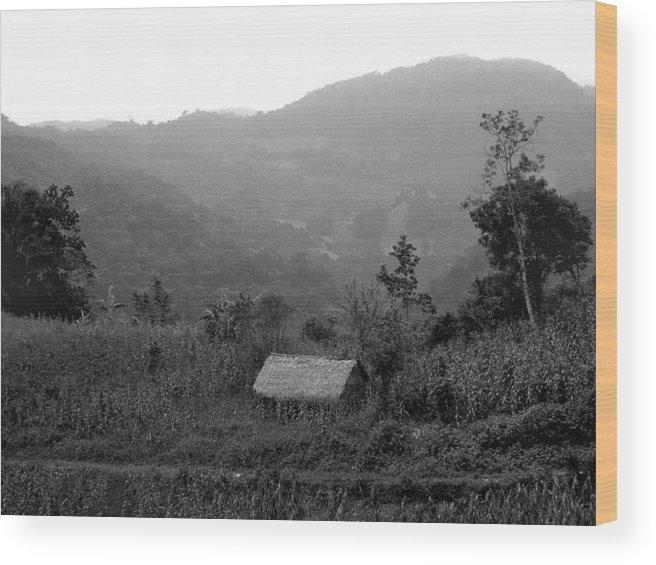 San Jose.mexico Wood Print featuring the photograph San Jose Hut by Tod Ramey