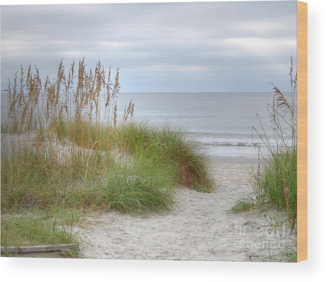 Beach Photography Wood Print featuring the photograph Serenity Beach In Color by Kathy Baccari