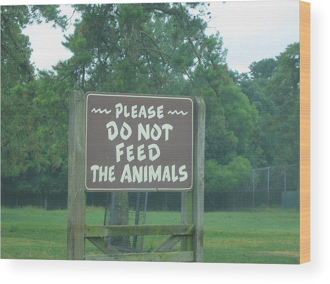 Six Wood Print featuring the photograph Six Flags Great Adventure - Animal Park - 121218 by DC Photographer