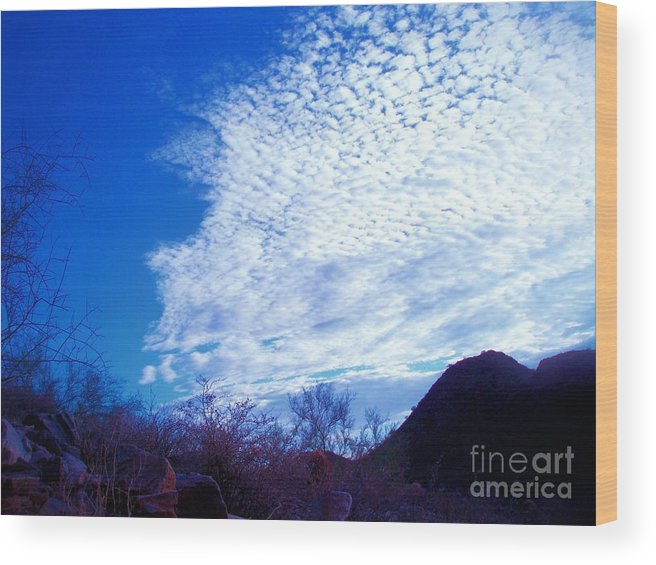 Sky Wood Print featuring the photograph Speckled Sky by Tahlula Arts