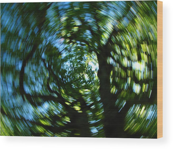 Intentional Camera Movement Wood Print featuring the photograph Spring Tree Carousel by Juergen Roth