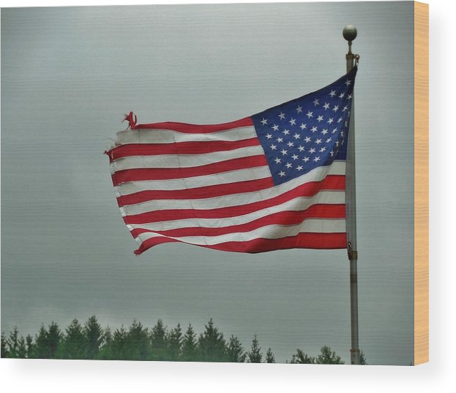 Stars And Stripes Wood Print featuring the photograph Stars And Stripes by Anthony Thomas