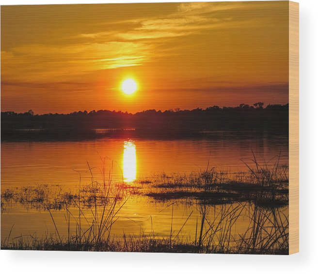 Sunset Wood Print featuring the photograph Sunset Walk In The Water by Zina Stromberg