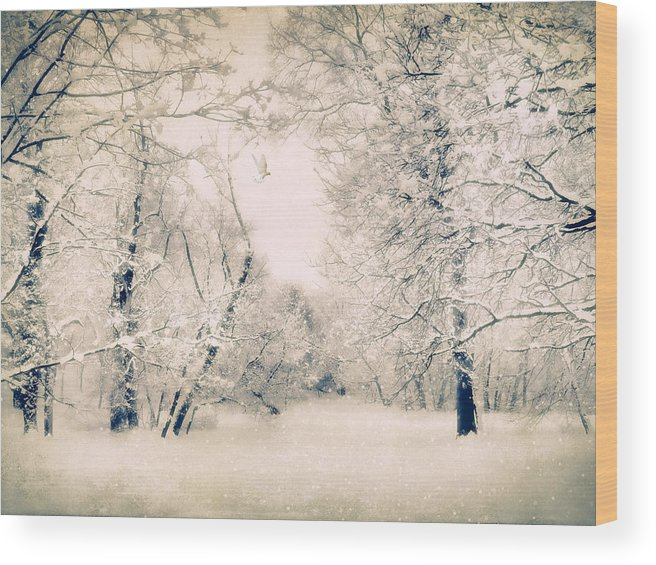 Winter Wood Print featuring the photograph The Blizzard by Jessica Jenney