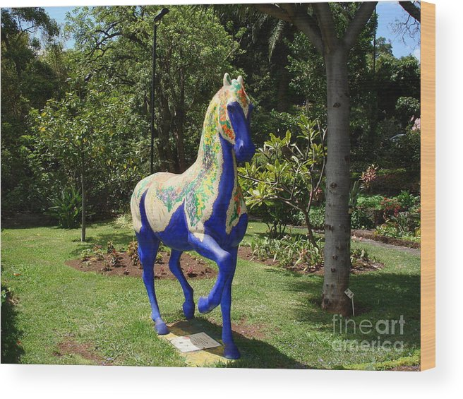 Horse Wood Print featuring the photograph The Blue Horse by John Chatterley