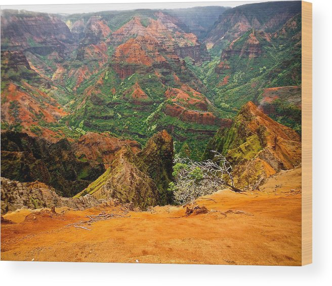 Wood Print featuring the photograph The Hills Have Eyes by Larry Spring
