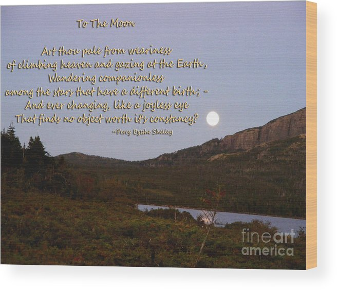 To The Moon Wood Print featuring the photograph To The Full Moon by Barbara Griffin