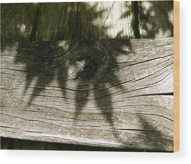 Nature Wood Print featuring the photograph Tranquility by Candace Boggs