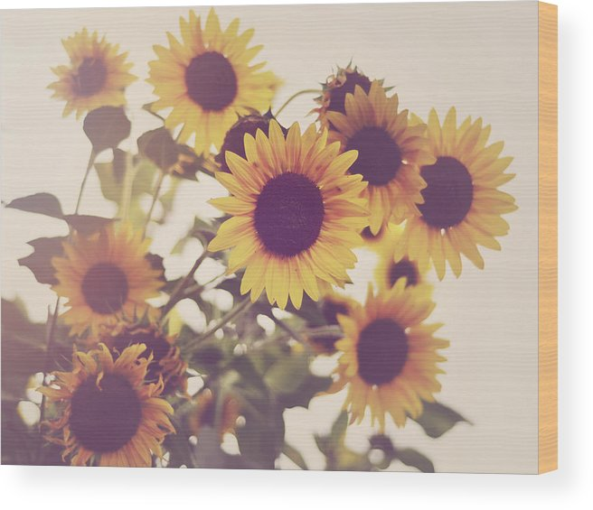 Sunflowers Wood Print featuring the photograph Vintage Sunflowers In The Garden by Elle Moss
