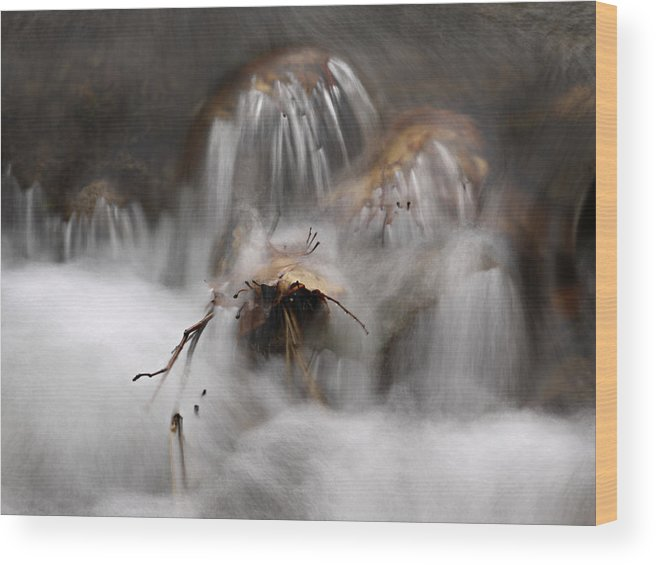 Water Wood Print featuring the photograph Water Study 015 by Judy Olson