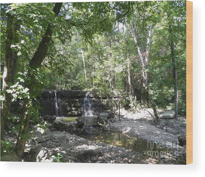 Hiking Wood Print featuring the photograph Waterfall Trail by Julie Kind
