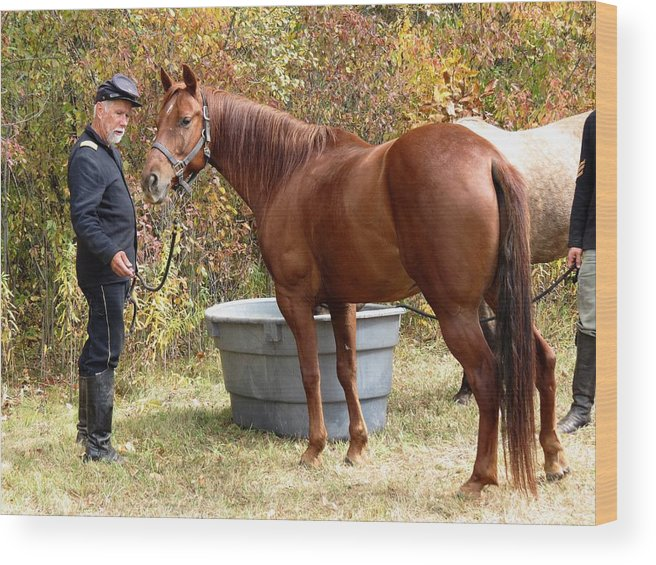 Civil War Wood Print featuring the photograph Watering The Horses by Alicia McNally
