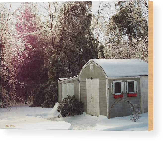 Winter Wood Print featuring the photograph Winter Morning by Shana Rowe Jackson