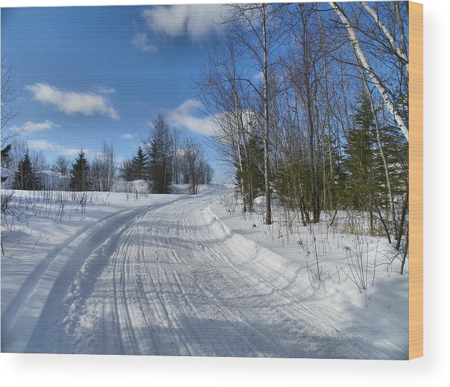 Landscape Wood Print featuring the photograph Winter Scape 1 by Gene Cyr