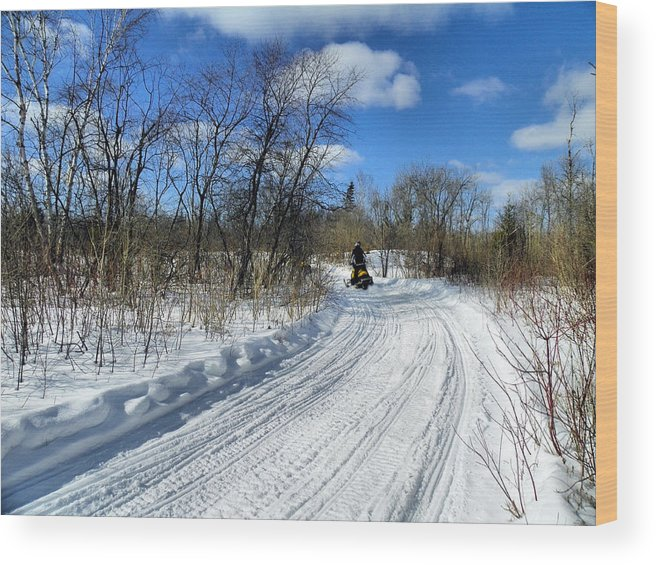 Landscape Wood Print featuring the photograph Winter Scape 2 by Gene Cyr