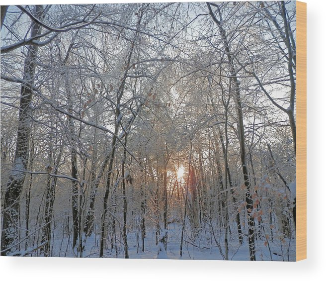 Sunset Wood Print featuring the photograph Winter Sunset by Pema Hou