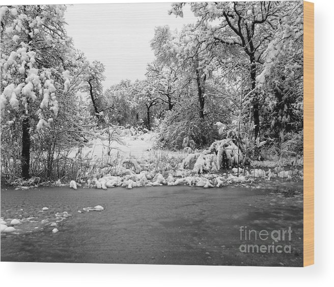 Landscape Wood Print featuring the photograph Winter's Blanket 2 by Earl Johnson