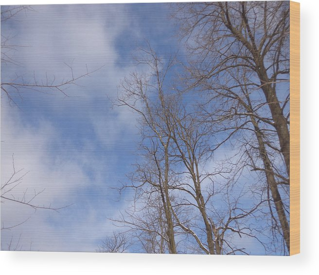 Blue Sky Wood Print featuring the photograph Winter's Blue Sky by Jacque Hudson