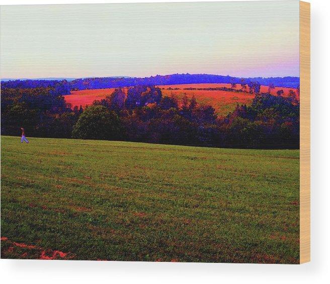 Yasgur Wood Print featuring the photograph Woodstock - Farm - Yasgurs by Susan Carella