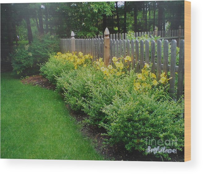 Beautiful Yard Wood Print featuring the painting Yellow Flowers In Bloom by Bobbi Groves