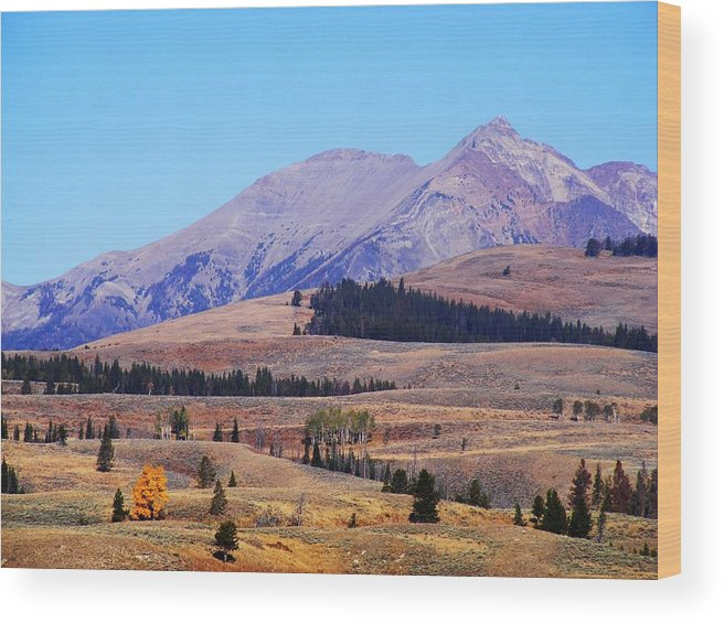 Yellowstone Wood Print featuring the photograph Yellowstone Electric Mountain by Indigo Wild Photography