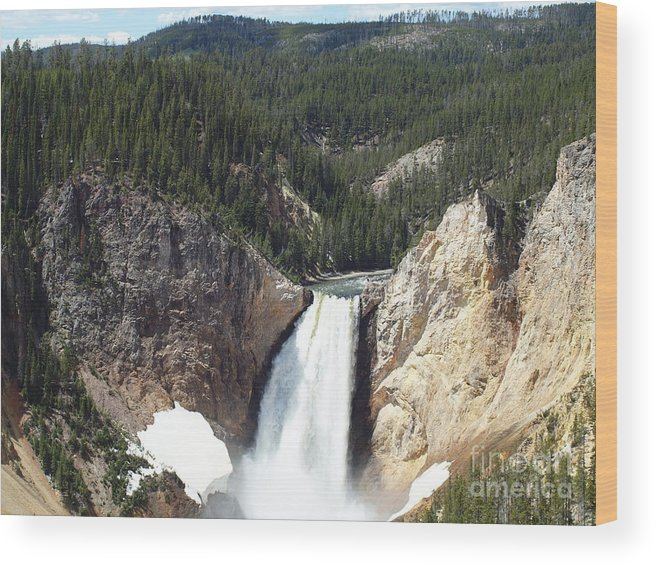 Waterfalls Wood Print featuring the photograph Yellowstone Grand Canyon by Tammy Bullard