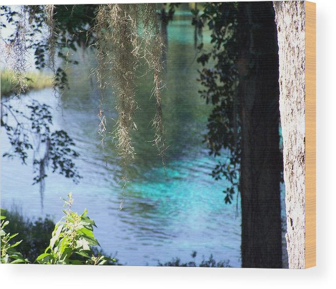 Landscape Wood Print featuring the photograph Peeking In On Serenity by Cheryl Matthew