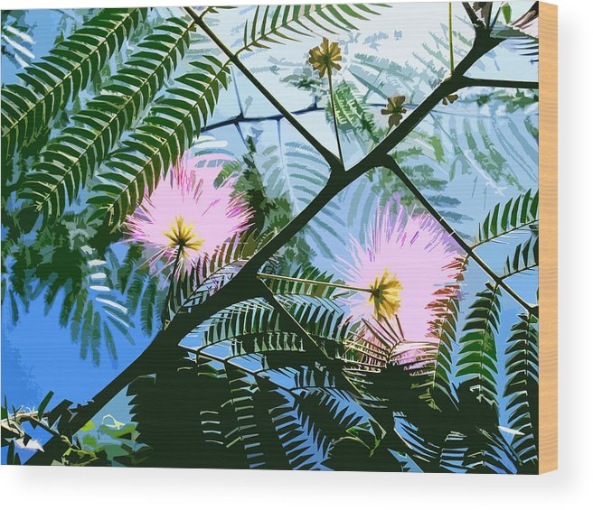 Nature Wood Print featuring the digital art Mimosa by Russell Clenney