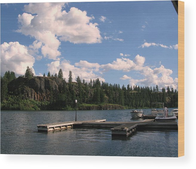 Water Wood Print featuring the photograph Lake by Allison Manning