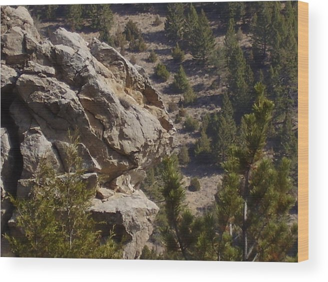 Rocks Wood Print featuring the photograph Montana Landscape by Yvette Pichette