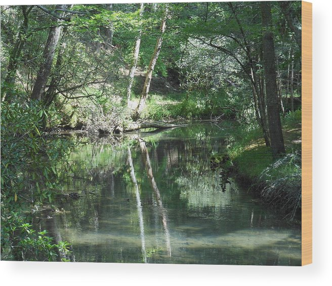 Abrams Creek Wood Print featuring the photograph Abrams Reflections by Linda Labadorf