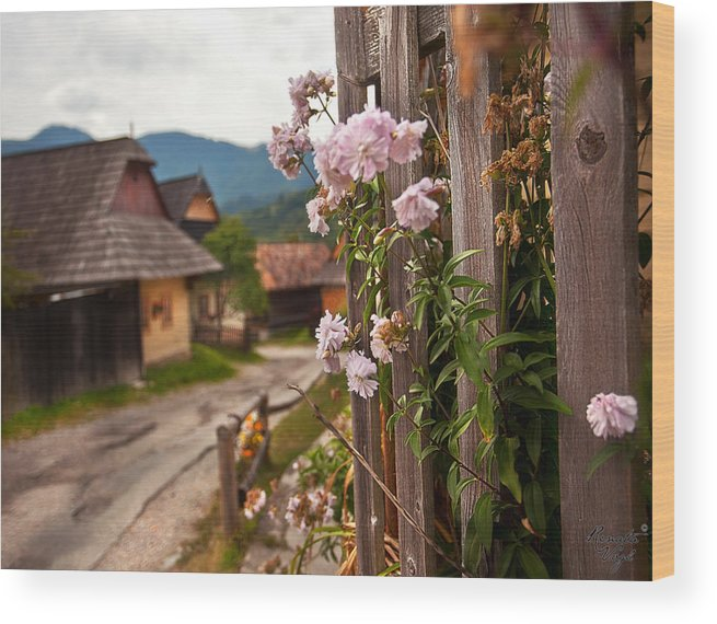 Hill Photographs Wood Print featuring the photograph all about slovakia IV. by Renata Vogl