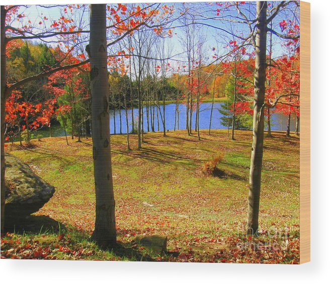 Autumn Wood Print featuring the photograph Autum Splender by Sherry Dulaney