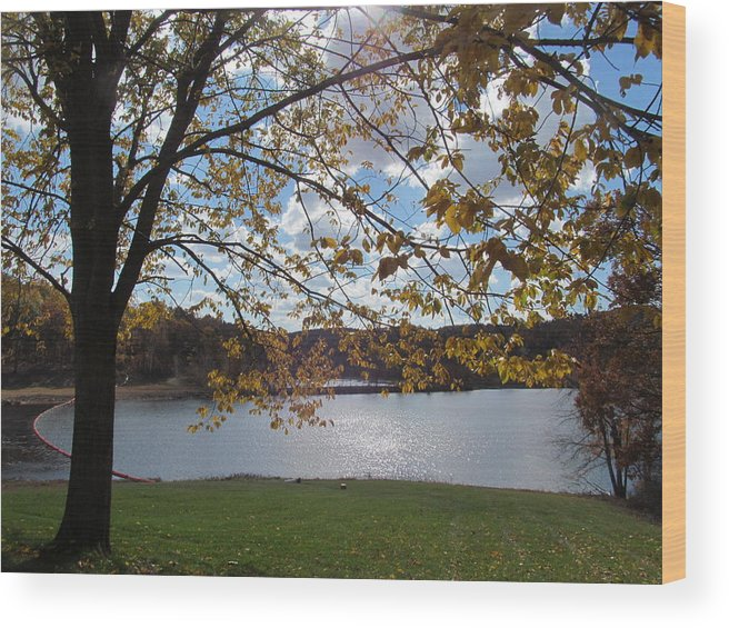 Nature Wood Print featuring the photograph Autumn Overlooking The Dam by Loretta Pokorny